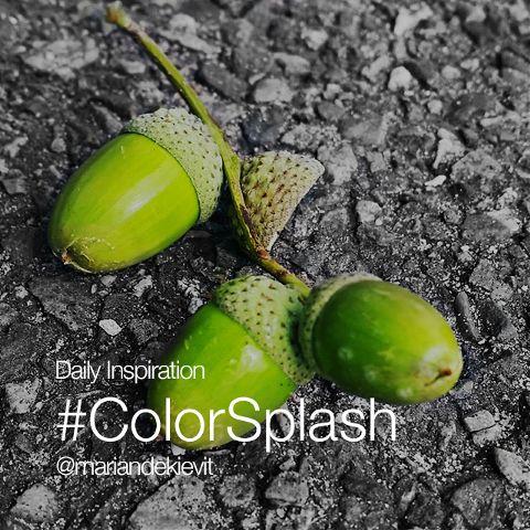 Thursday Inspiration color splash