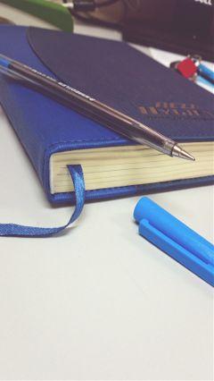 photography blue vintage dairies pen