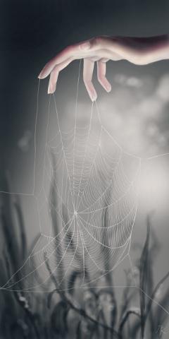 drawing digitaldrawing spiderweb hand dcspiderweb