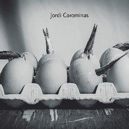 food photography art emotions vintage