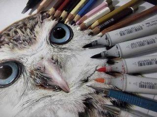 drawing art creative