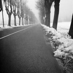 winter street snow mist black