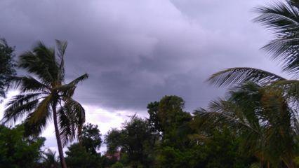 photography hdr freetoedit rain nature