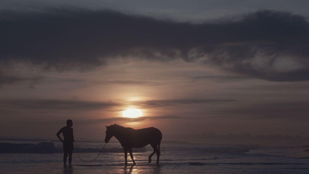 Siluet   #beach #photography #nature #sunset