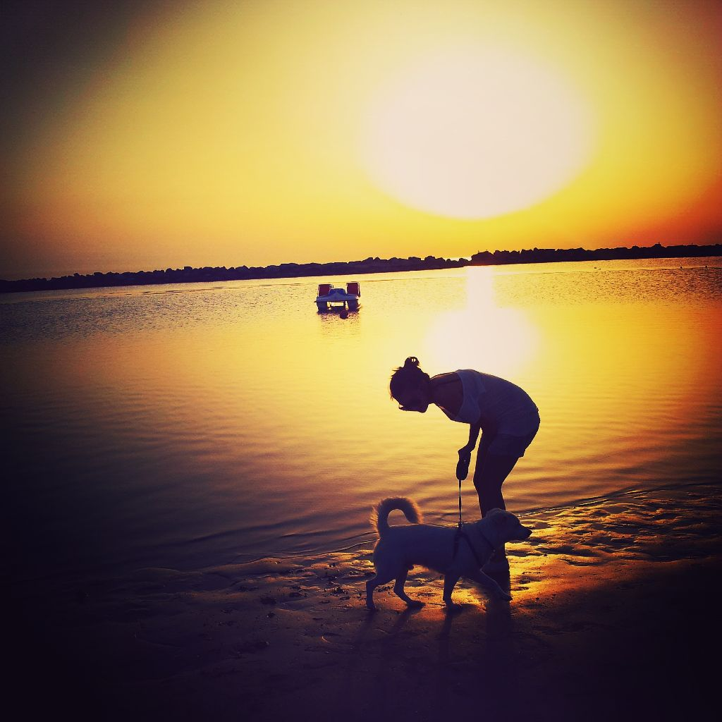 #mylove #puppy #dog #summer  #sea #moments #phonephotography  #photography #photo #yellow