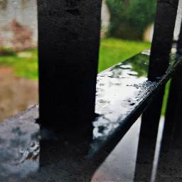 rainday emotions photography nature retro