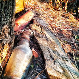 summer photography freetoedit bottle turkei