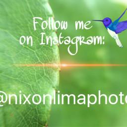 instagram social followme socialnetwork interesting