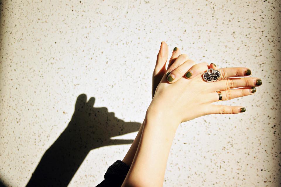 #shadow #dog #hands #shadowplay